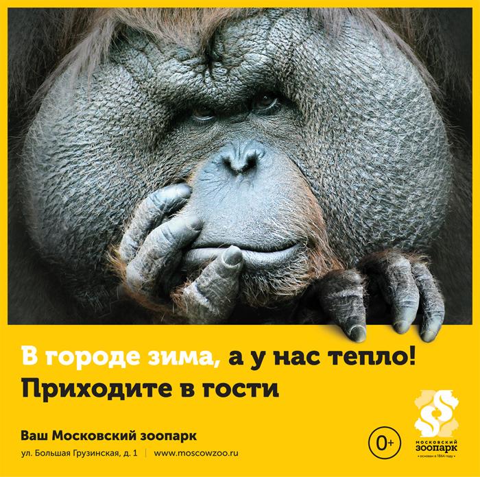 Ваш Московский зоопарк