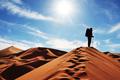 Пустынный генокод