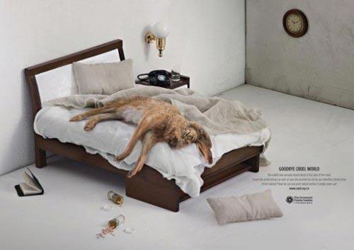 Слоган О Защите Животных