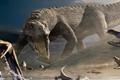Традиционных медиапланеров ждет участь динозавров?