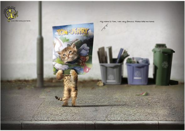 Реклама казино Lucky Cat