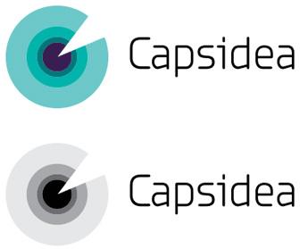 Фирменный стиль аналитического онлайн-сервиса «Капсидея»