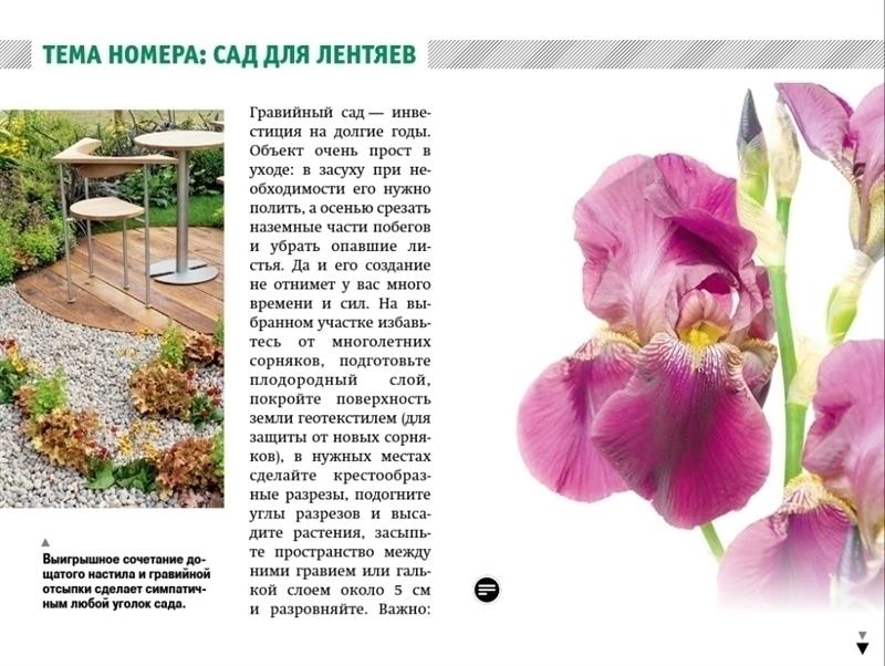 «Мой прекрасный сад» обзавелся планшетной версией!