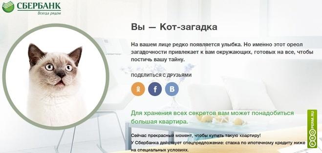 Банки Перми Физическим лицамЮридическим лицамКороткие новостиВопросы-Ответы Сбербанк «нанял» для рекламы ипотеки в интернете котиков
