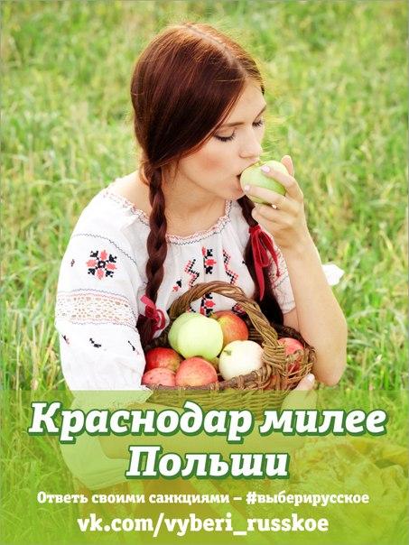 Новосибирские активисты призывают отказаться от европейских и американских продуктов