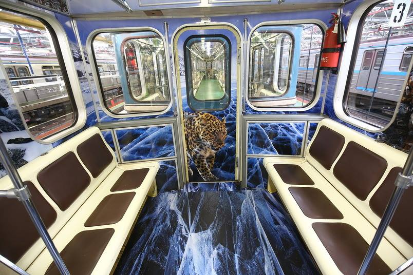 фото вагонов метро с тиграми