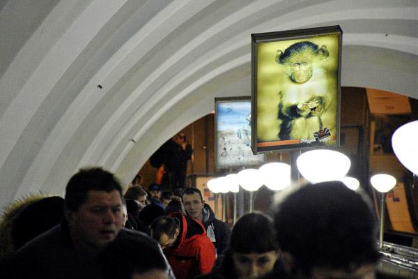 В Петербурге пройдут торги на право в течение 10 лет размещать рекламу в метро.