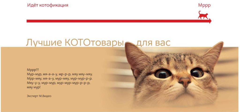Сайт для котов М.Видео.
