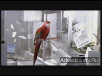 "Телереклама ""HP photosmart 4"", бренд: HP, агентство: Publicis United"