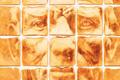 """Печатная реклама """"Beckett""""  Агентство: Bloom  Рекламодатель: Pat the Baker  Бренд: Pat the Baker"""