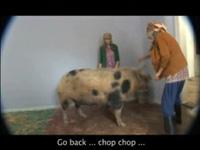 "Телереклама ""The Farm""  Агентство: Mark BBDO"