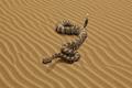 "Печатная реклама ""Snake""  Агентство: DDB&co. Istanbul  Рекламодатель: WWF  Бренд: WWF"