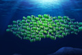 "Печатная реклама ""Fishes""  Агентство: Longplay 360º  Рекламодатель: Fujifilm  Бренд: Fujifilm Finepix"