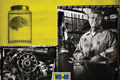 "Печатная реклама ""Genius""  Агентство: O`Leary and Partners  Бренд: WD-40"