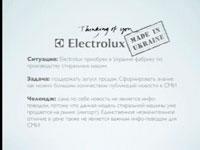 """Медиа-проект """"Особенности национальных пятен"""", бренд: Electrolux, агентство: Talan Group"""